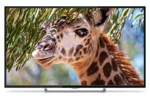 """Телевизор Polarline 50PU11TC-SM 50"""" (125 см) черный"""