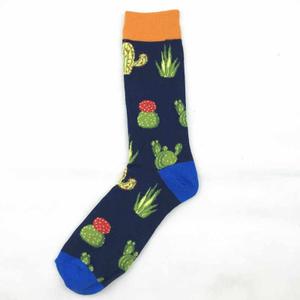 """Дизайнерские носки серии в гармонии с природой """"Разноцветные кактусы"""""""