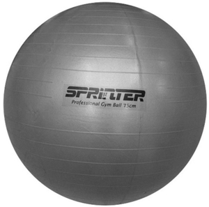 Мяч для фитнеса Anti-burst GYM BALL матовый. Диаметр 75см. FB-75 (серебро)