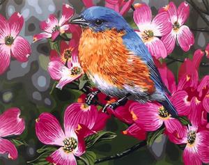 "Картина по номерам на холсте 40х50 ""Птичка на цветущей ветке"""