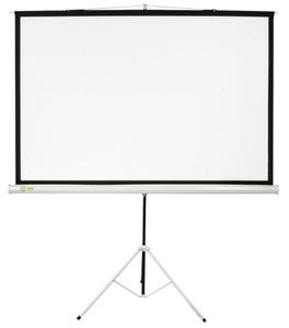 """Экран на треноге Cactus Triscreen < CS-PST-124x221 > (100"""", 16:9, 124x221см, Matte White)"""