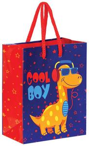 """Пакет подарочный 11*14*6,5см ArtSpace """"Cool Boy"""", ламинированный"""