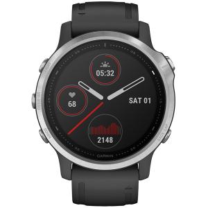 Смарт-часы Garmin fenix 6S серебристый