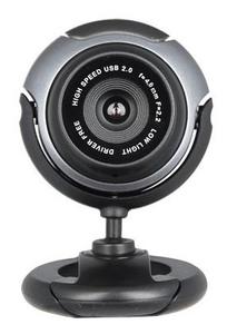 Камера Web A4 PK-710G черный 0.3Mpix USB2.0 с микрофоном