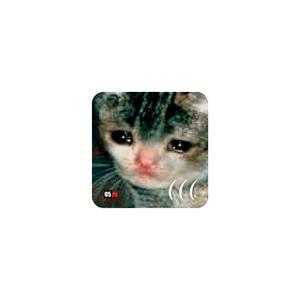 Стикер Плачущий кот