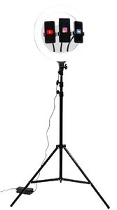 Светильник напольный Artstyle TL-603B черный